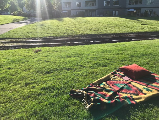 Blanket on the grass in the sun