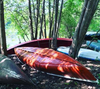 The free canoes and kayaks on the side of the river