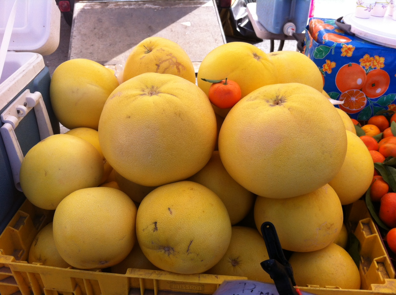 Big Pumelos Small Tangerine - A Savings Guide Based On The Taxes You Pay