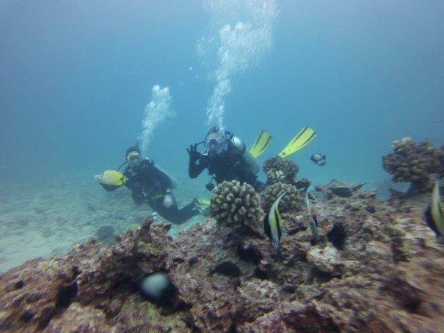 Why work when you can SCUBA? - Reflecting On Two Years Of Freedom From Work