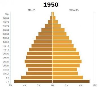 Age demographics US 195