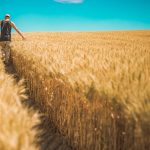 The Definitive Guide To Farmland Investing