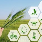 Experts examine 4IR impacts on agribusiness