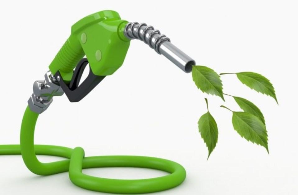 Znalezione obrazy dla zapytania biofuel