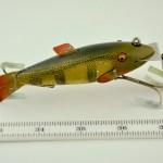 Creek Chub Fin Tail Shiner Measures