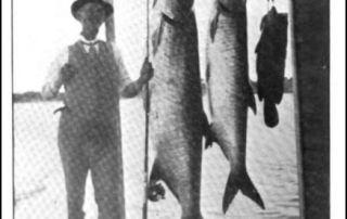 Black Bass In Florida James Heddon Janette Hawley