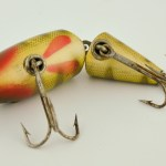 Hand Painted Gill Marks on Wigglefish