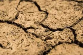 Sucha i jałowa ziemia