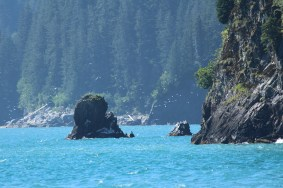 Kenai-Fjords-National-Park-alaska-ecoturismo-26