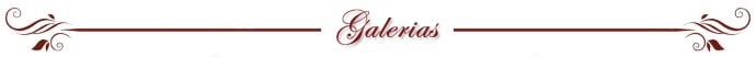 Division_galerias