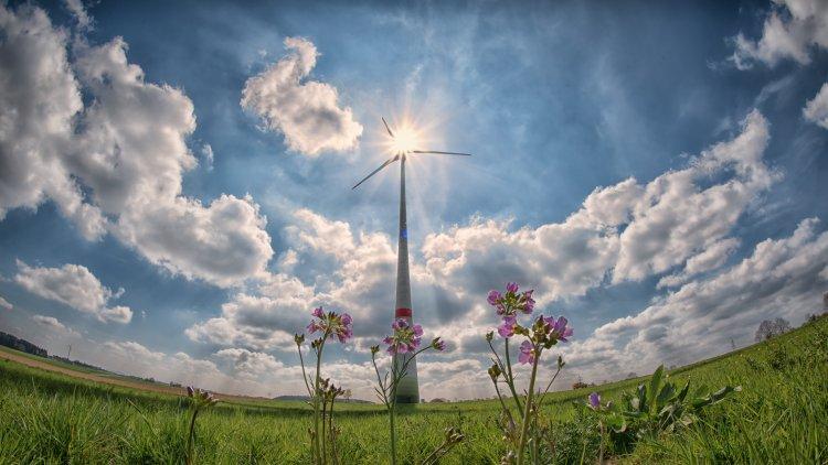 Cómo hacer que tu casa sea más sostenible