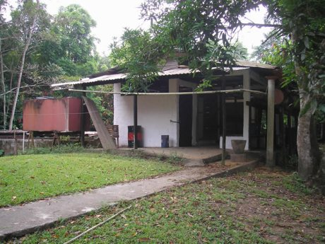 Shed for drying cacao (now unused)