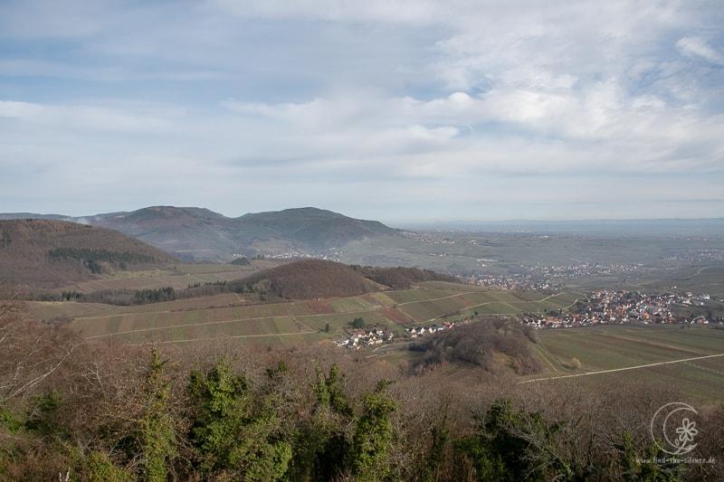Blick übers Rheintal