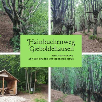 Hainbuchenwald Gieboldehausen