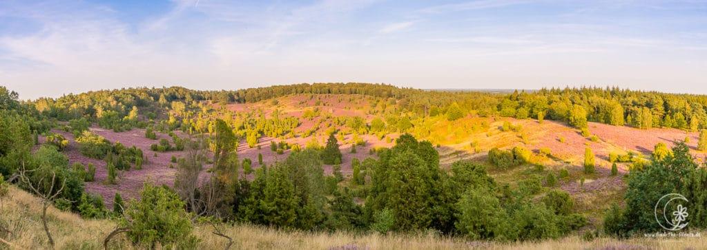 Wanderung zum Totengrund im Naturschutzgebiet Lüneburger Heide