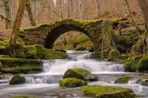 die alte Brücke im Katzenbachtal