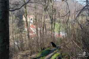 Abstieg von der Lützelalb
