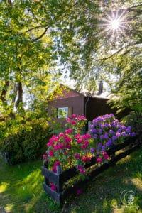 Sauerländer Vorgartenidylle