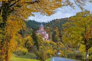 Ein letzter Blick auf Schloss Zwingenberg