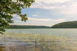Der Spindzius-See