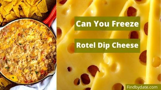 can you freeze rotel cheese dip all