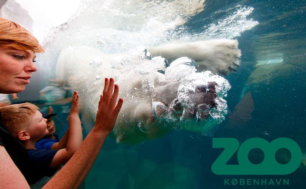 København Zoo - Årskort Voksen Image