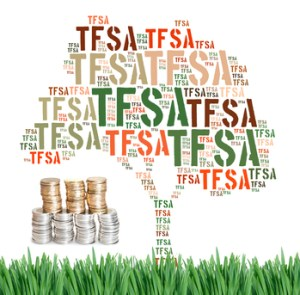 Canadian Tax-Free Savings Account concept word cloud