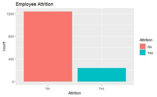 Exploring Employee Attrition and Performance with R 1