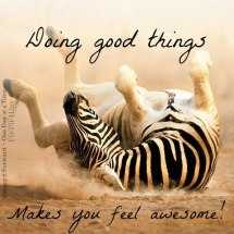 doing good things feels awesome
