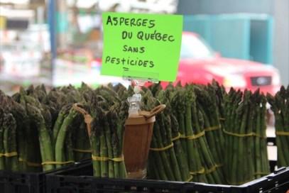 JT-asparagus