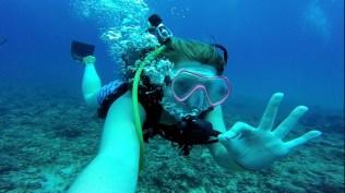 Dive7