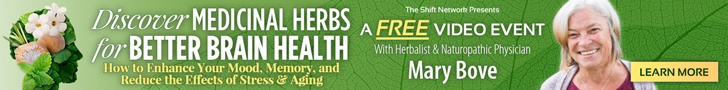 Herbs for Better Brain Health