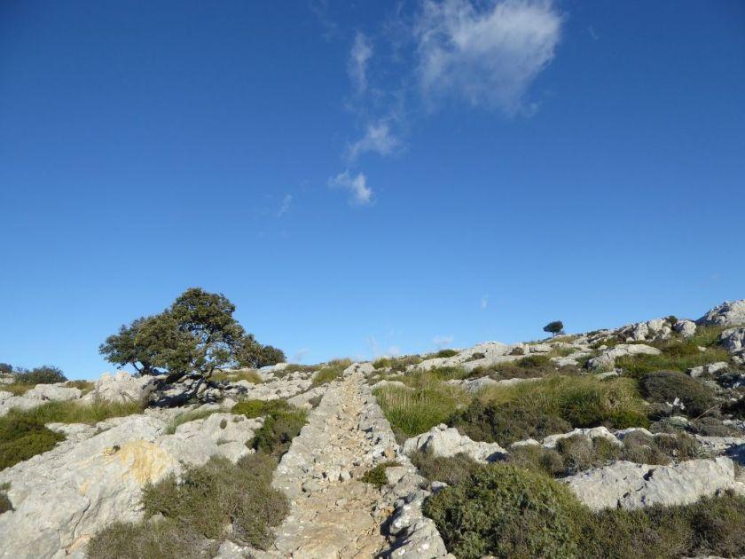 Mallorca kleine Wanderung im Valldemossa Heide
