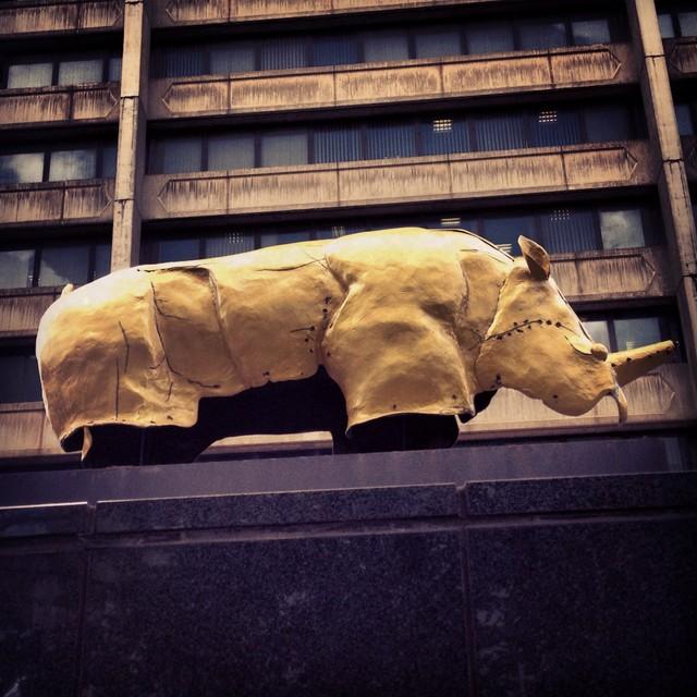 Mapungubwe gold rhino