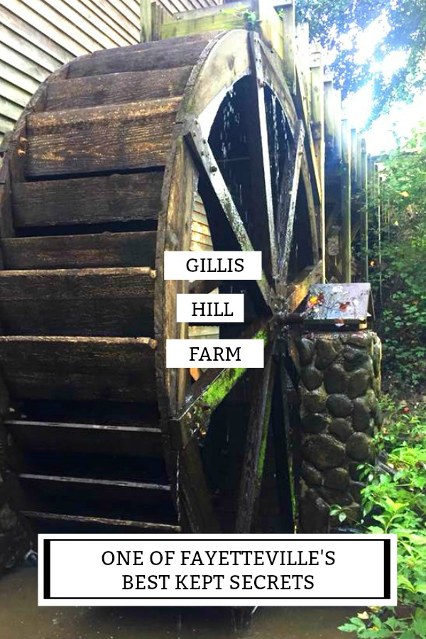 Things to do in Fayetteville: Gillis Hill Farm