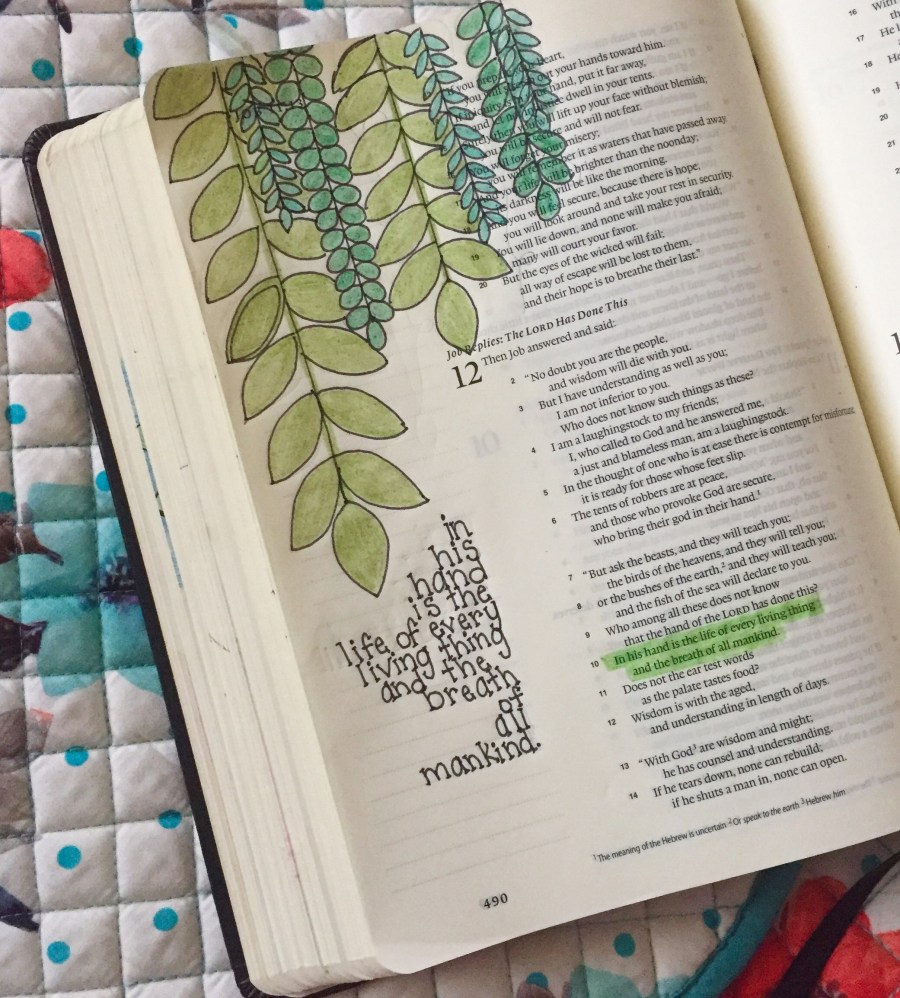 A look at my Bible art.