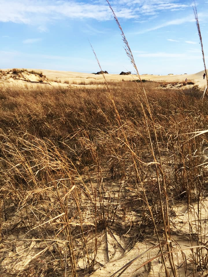 Hiking at Jockey's Ridge State Park in North Carolina's Outer Banks.