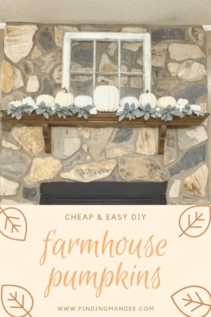 Cheap and Easy DIY Farmhouse Pumpkins | Finding Mandee
