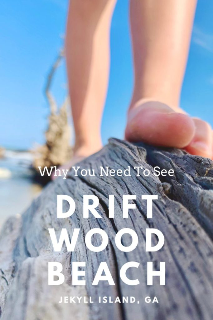 Why You Need to See Driftwood Beach in Jekyll Island, GA | Finding Mandee