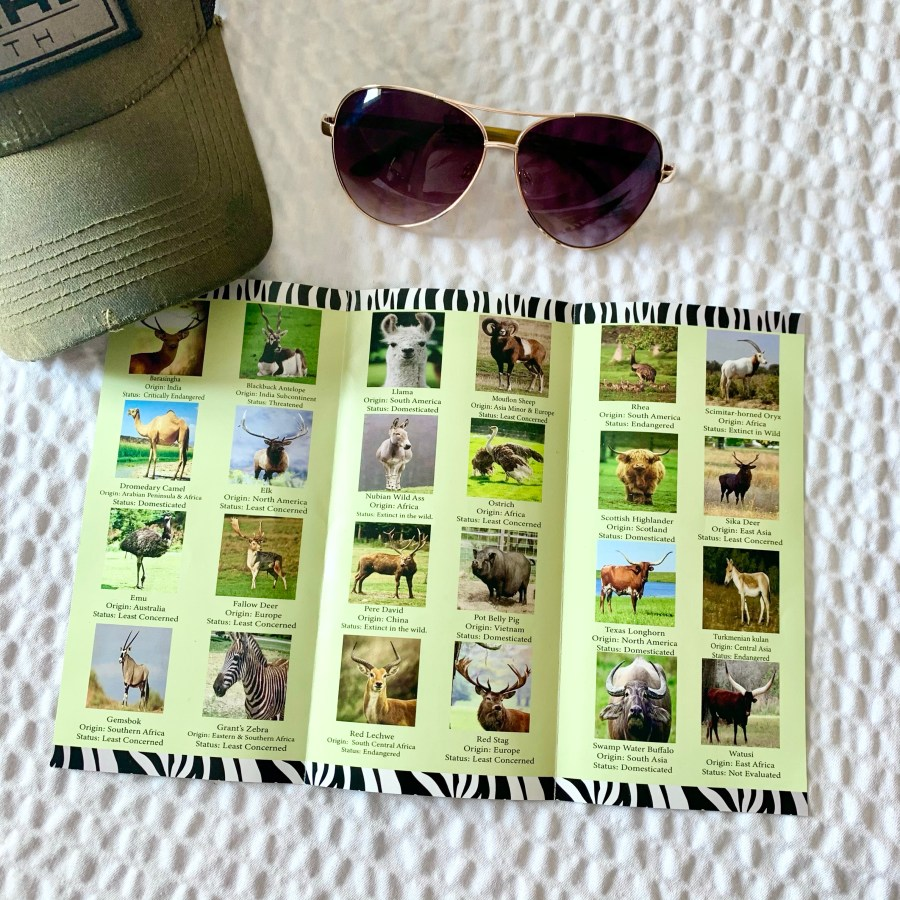 The brochure from Topsey Exotic Ranch told us the names of the animals.