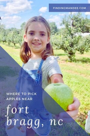 Where to Pick Apples Near Fort Bragg | Finding Mandee
