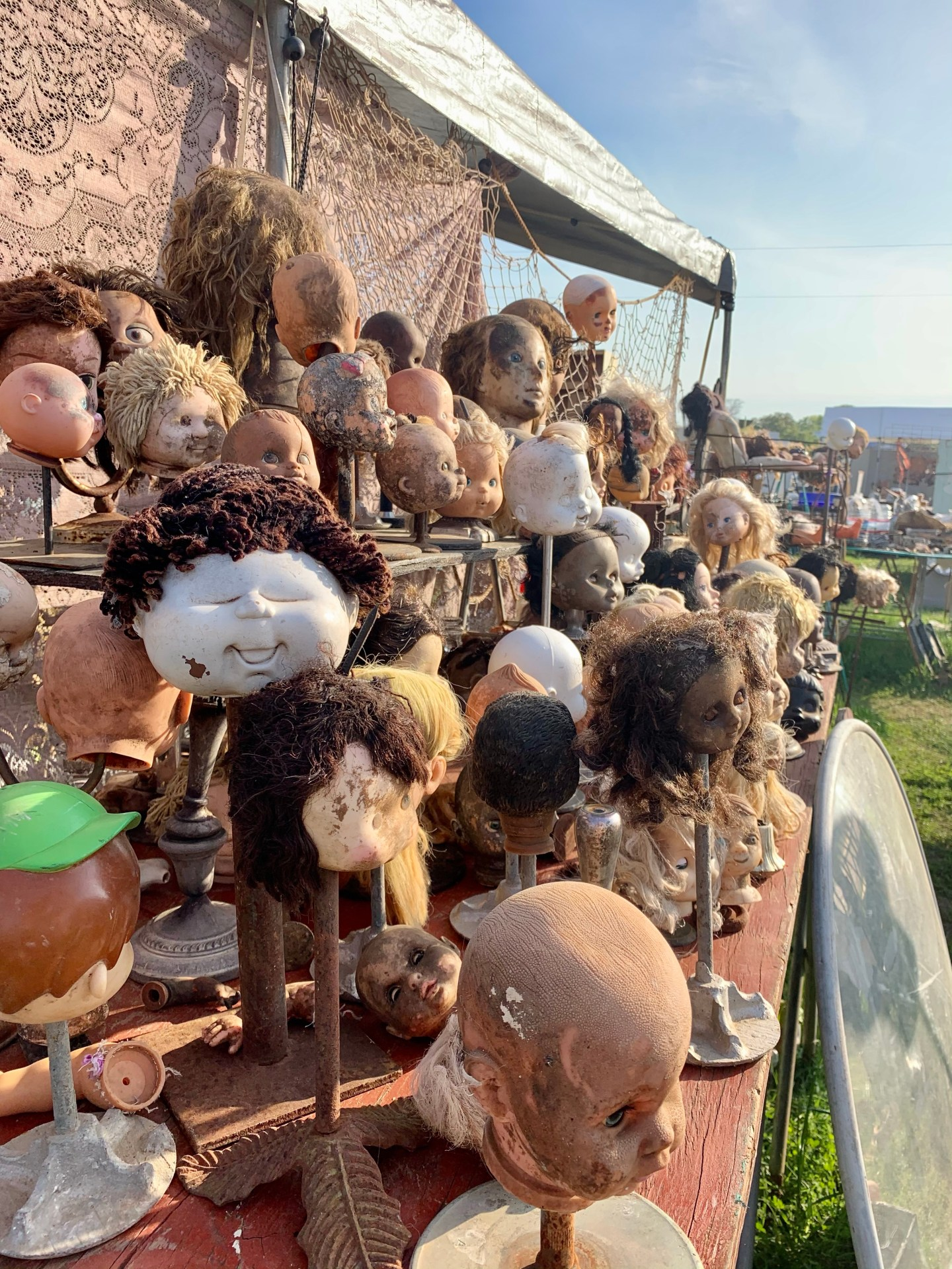 Creepy baby doll heads on sticks at the Round Top Antique Show.
