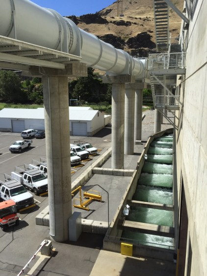 Fish ladder below with juvenile fish bypass system above