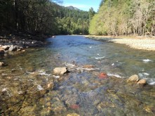 Just downstream of Glines Canyon Dam site