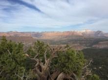 View into Zion