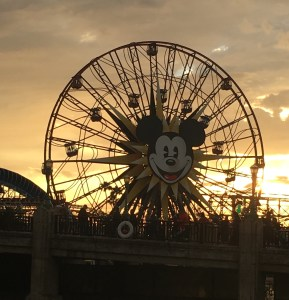 mickey-sunset