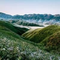Dzukou Valley of Manipur