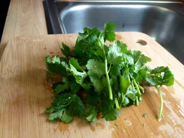 salsa cilantro