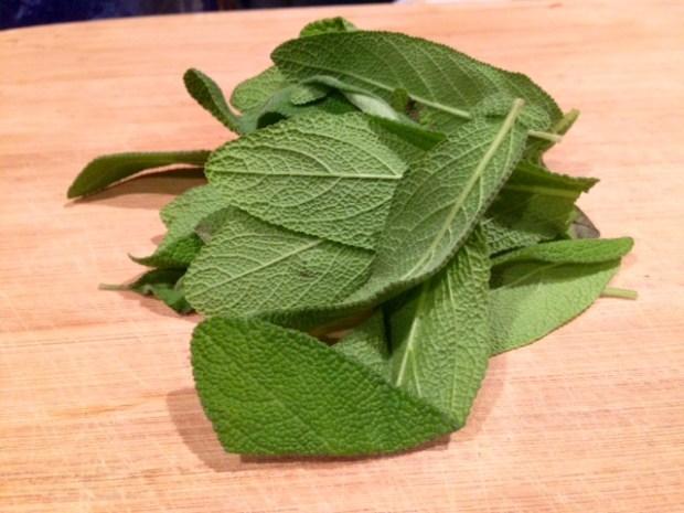 butternut squash & sage lasagna sage leaves
