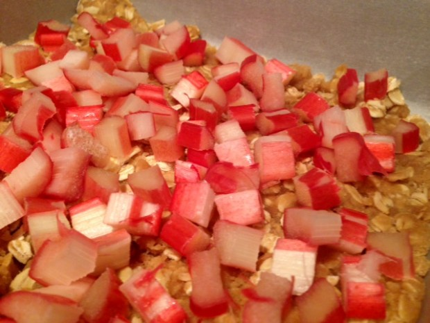 strawberry rhubarb crumb bars rhubarb topping